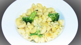 Macaroni & broccoli in a cream sauce